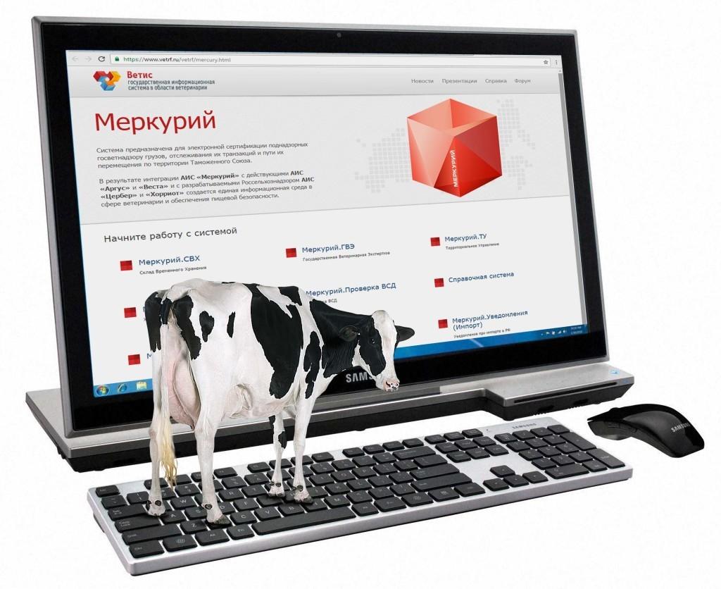 Картинки по запросу Электронная сертификация молоко картинки